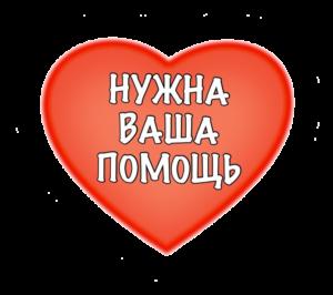 vasha-pomoshh