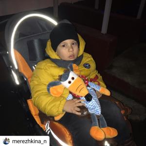 merezhkina_n_20191225133926
